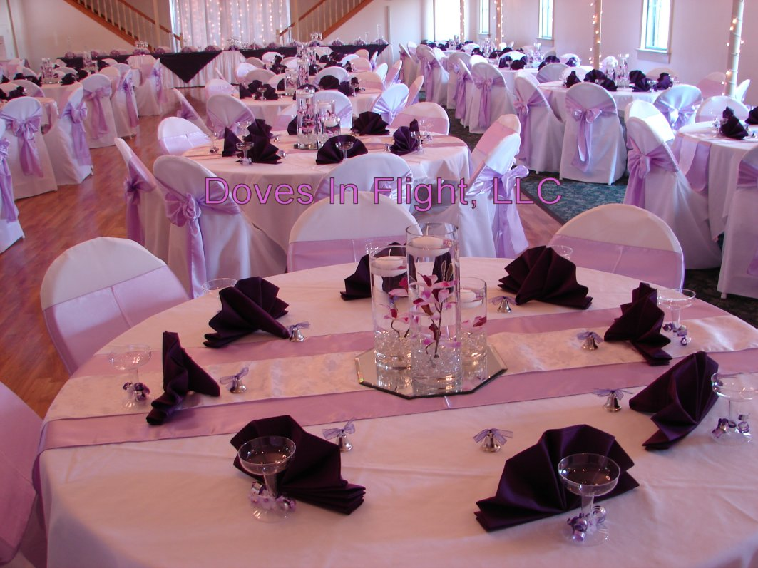 Chair Covers of Lansing / Doves In Flight Decorating