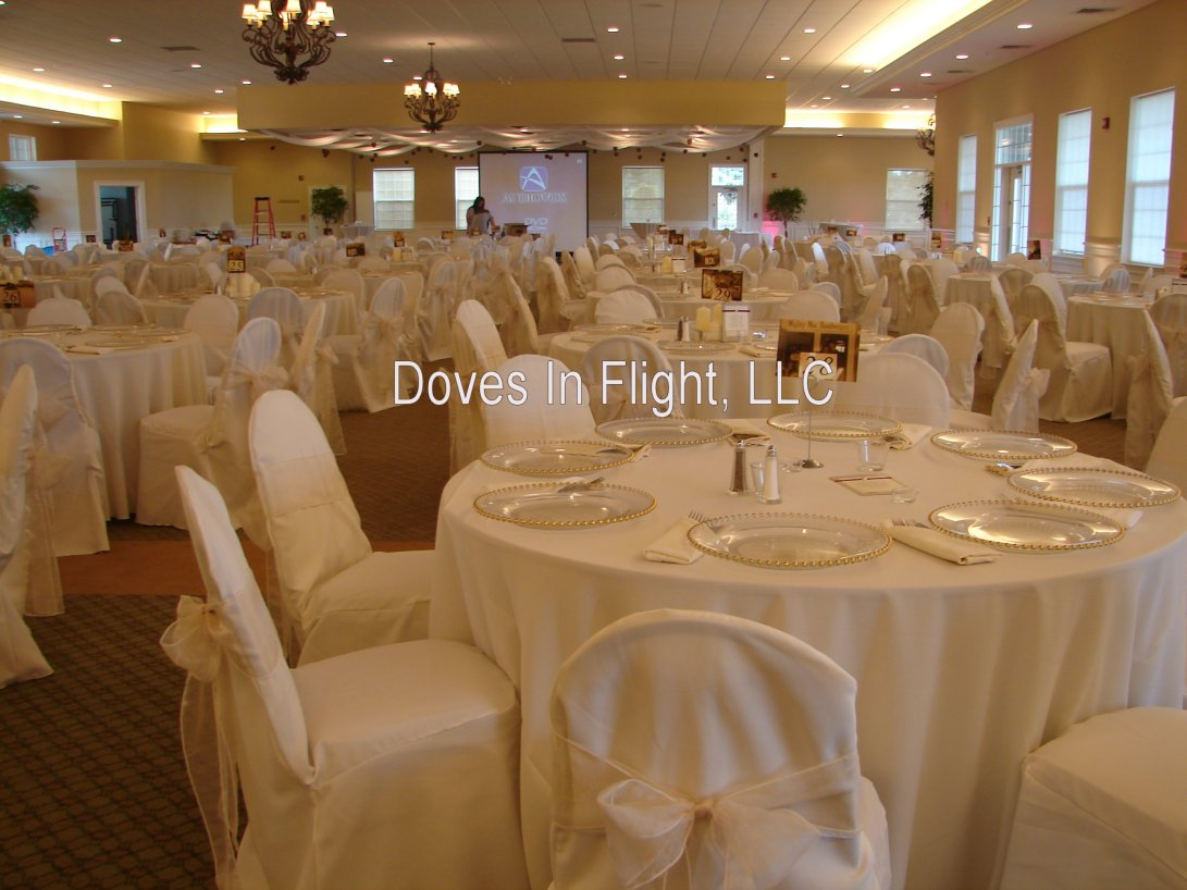 Outstanding Chair Covers Of Lansing Doves In Flight Decorating Ibusinesslaw Wood Chair Design Ideas Ibusinesslaworg